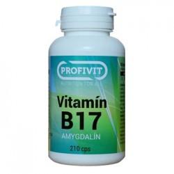 Vitamín B17 Amygdalín